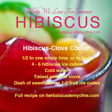 HERBS we love for summer, hibiscus