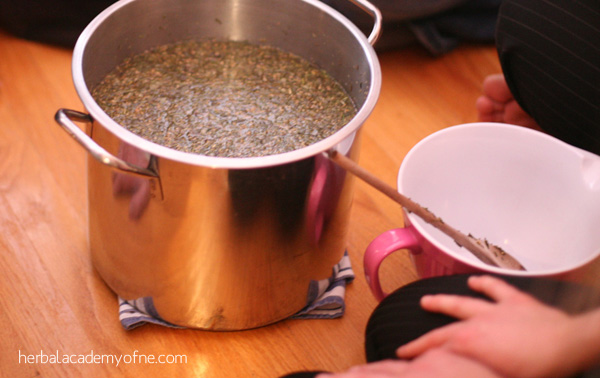 Herbal Home Remedies for Colds and Flu