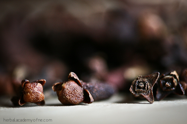 What are cloves? Get the health benefits!
