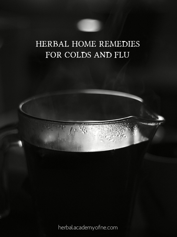 herbal home remedies for colds and flu season