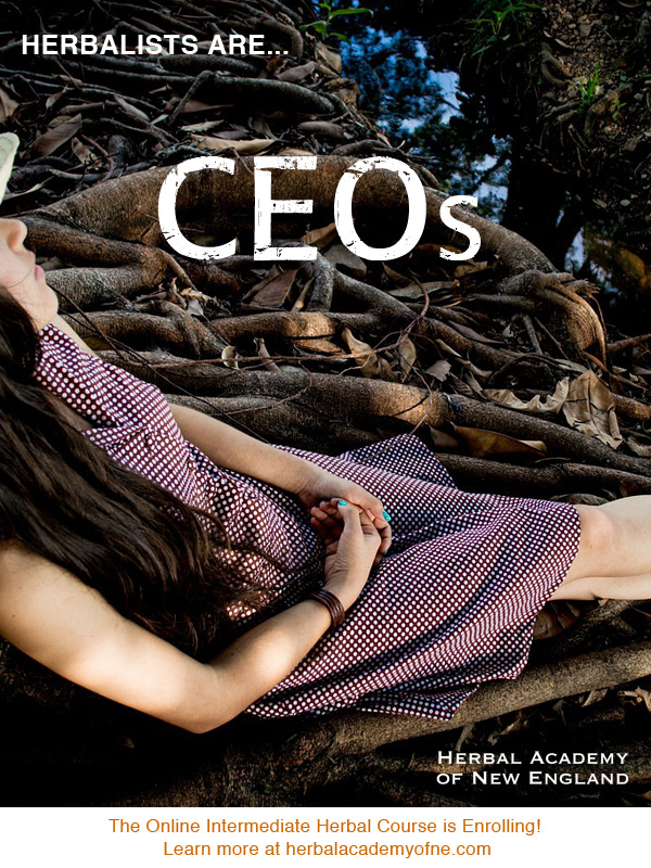 Herbalists are CEOs - Herbal Academy of New England