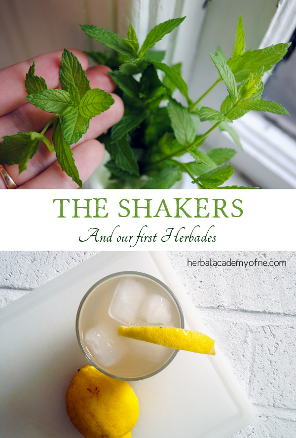 The Shakers and our first Herbades recipes
