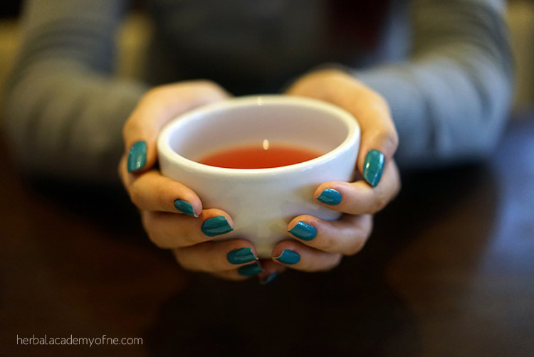 Ten Homemade Herbal Teas for Cold and Flu Season by the Herbal Academy