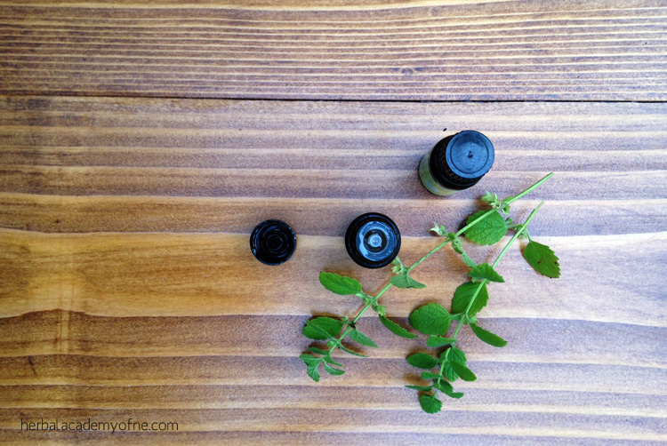 A Closer Look at Essential Oils and Safety by the Herbal Academy of New England