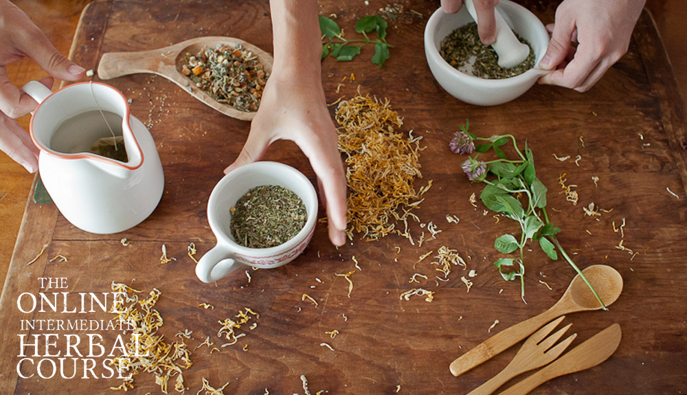 Intermediate Herbal Course - for global students