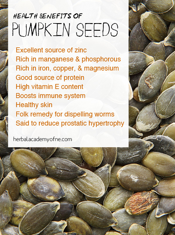 The Health Benefits of Pumpkin Seeds - Herbal Academy of New England