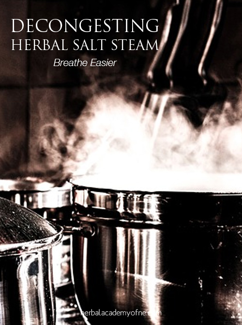 Decongesting Herbal Salt Steam for Colds - Herbal Academy of New England