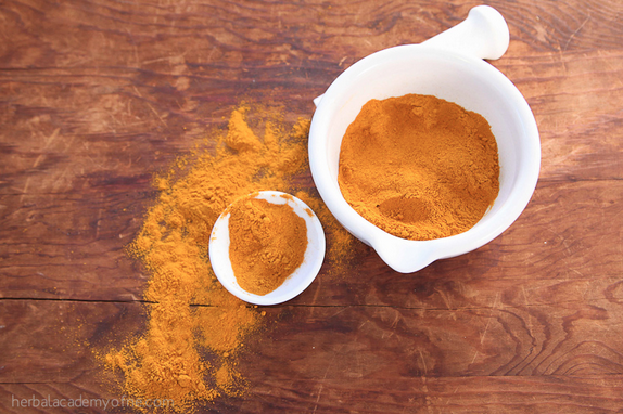 Turmeric for Dogs and Animals