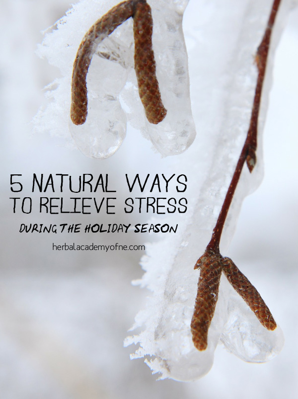 5 Natural Ways to Relieve Stress During the Holiday Season - by the Herbal Academy
