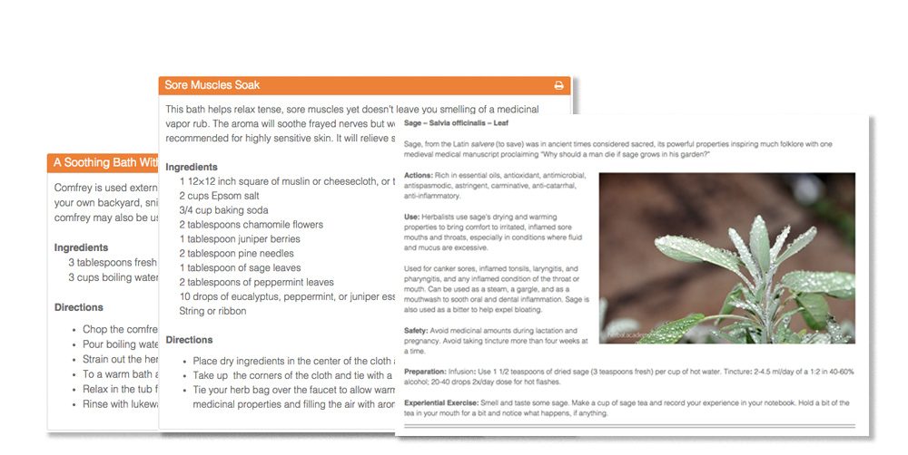 Introductory Herbal Course preview - recipes and monographs