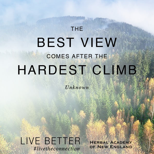 The Best View comes from the Hardest Climb. Set your goals high and aim for success.