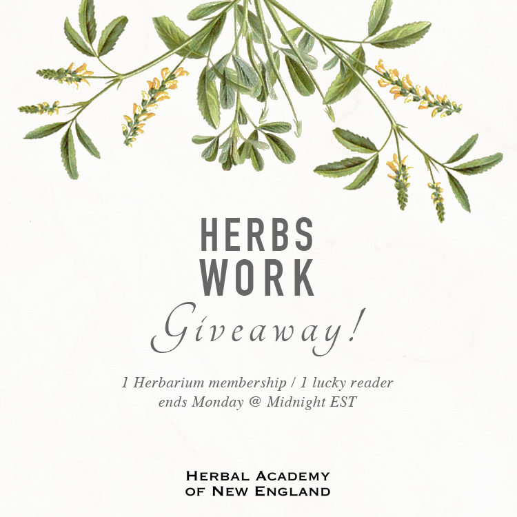 Herbs Work Giveaway by the Herbal Academy