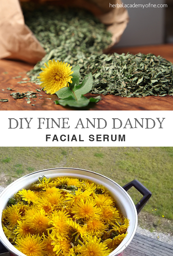 DIY Dandelion Facial Serum