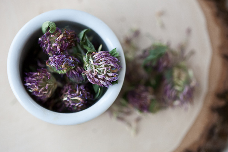 Making Country Wine with Herbs and Flowers