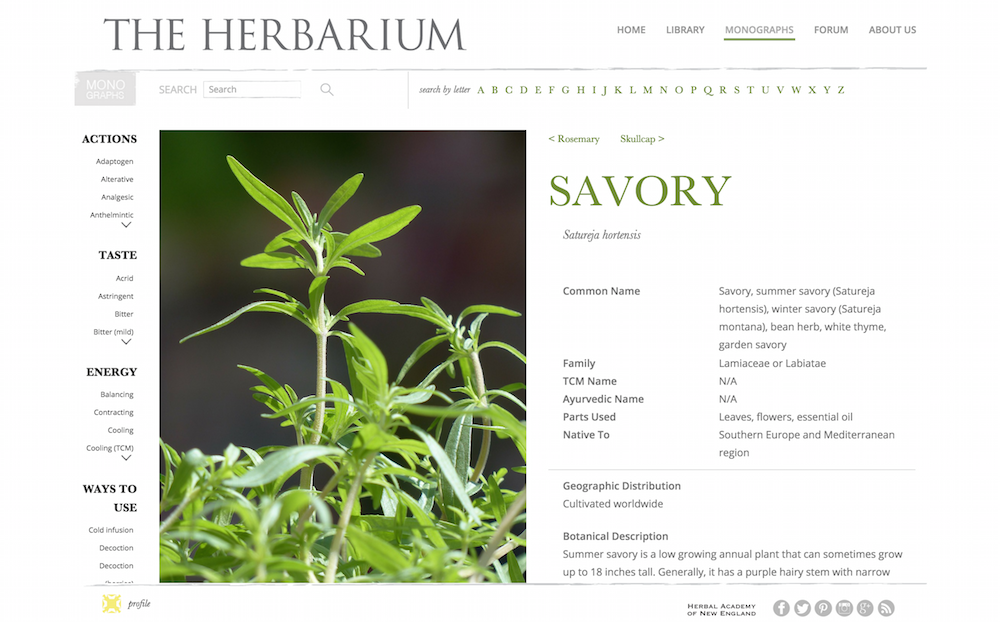 Savory Monograph from The Herbarium