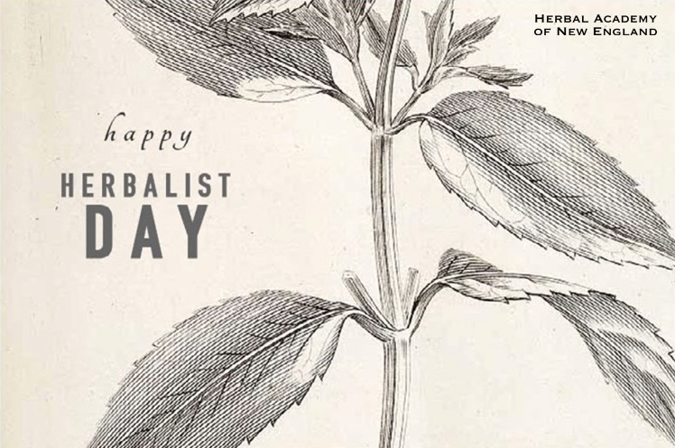 Thank you from HANE - Thank an Herbalist