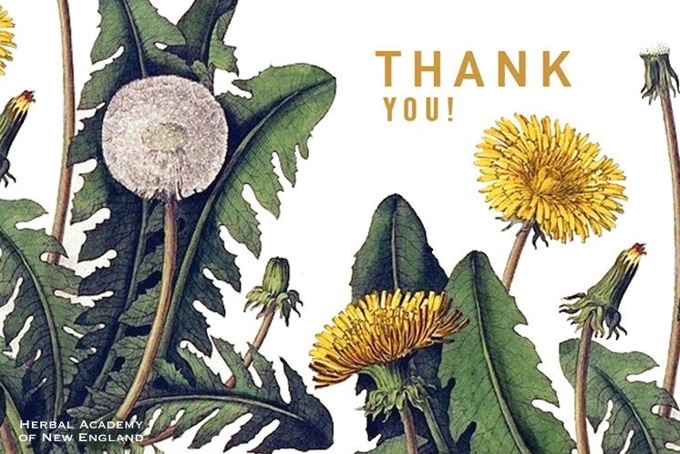 Thank you from the Herbal Academy - Thank an herbalist day