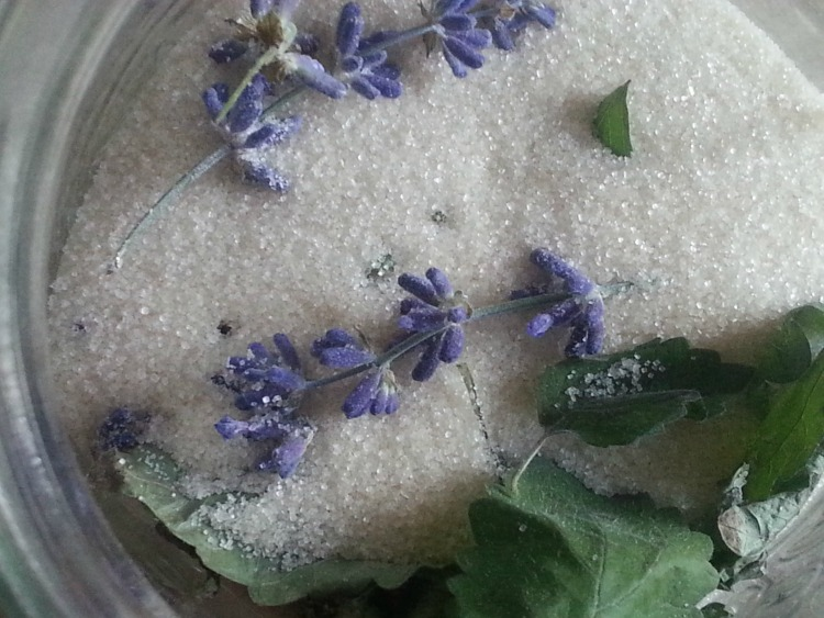 Lemon balm lavender sugar: topping for delicious scones