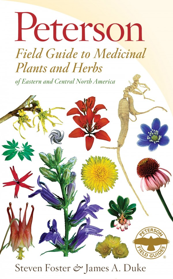 One Herb At A Time: 7 Ways To Inspire Your Herbal Studies | Herbal Academy | When you begin your herbal studies, the sheer number of herbs to learn can be intimidating. It's useful to learn herbs by studying them on herb at a time.