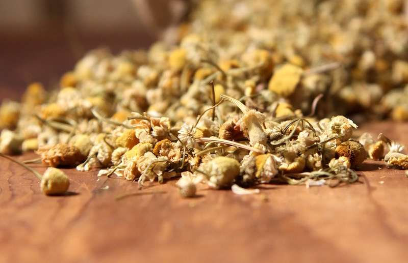 Chamomile Flowers - Uses of the Chamomile Plant