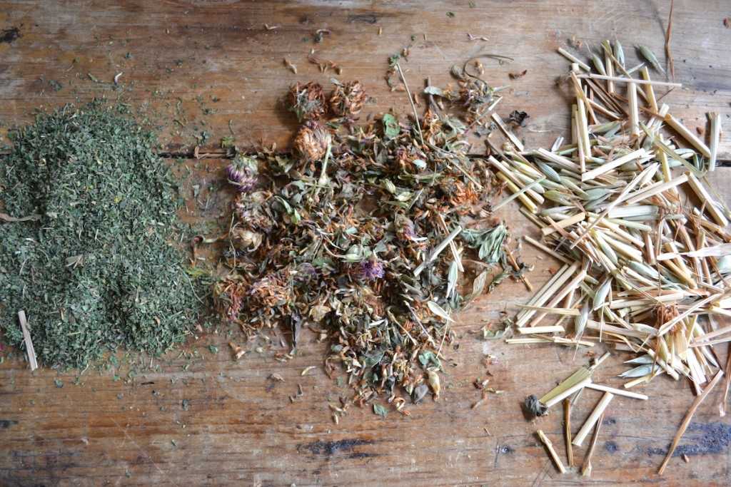 Organizing your Herbal Apothecary