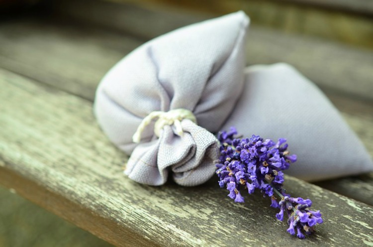 The Benefits Of Lavender In The Family Home: Cleaning With Lavender