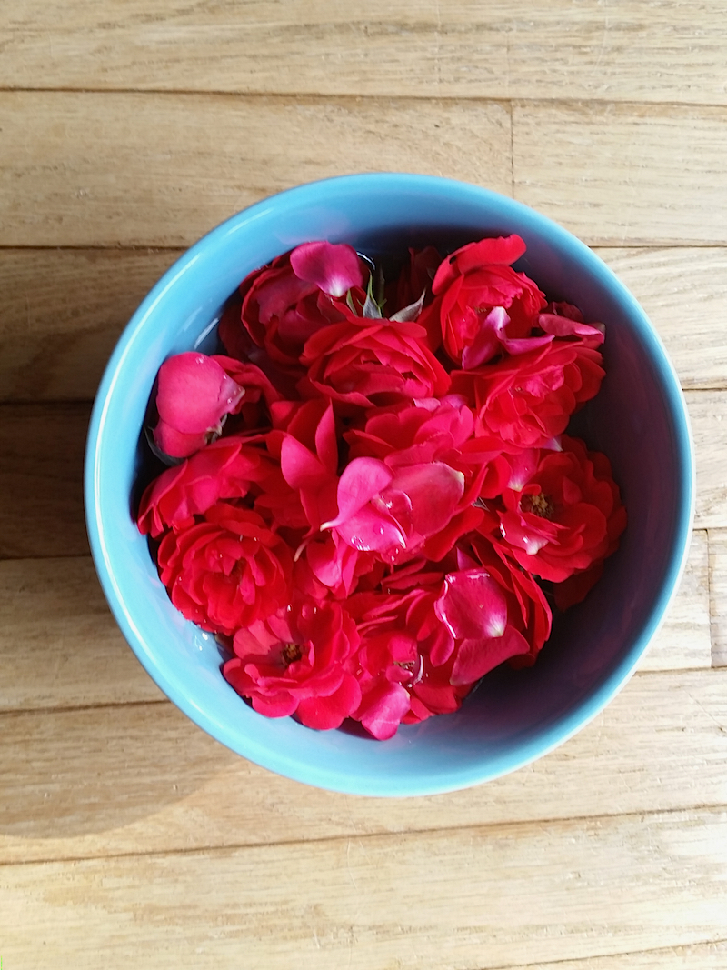 How to Make Rose Flower Water
