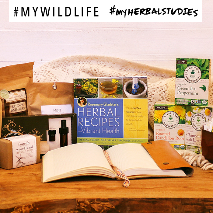 My Wild Life Giveaway with Traditional Medicinals #myherbalstudies #mywildlife